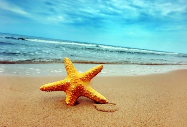 Üyelerimize Özel Tatil Fırsatları